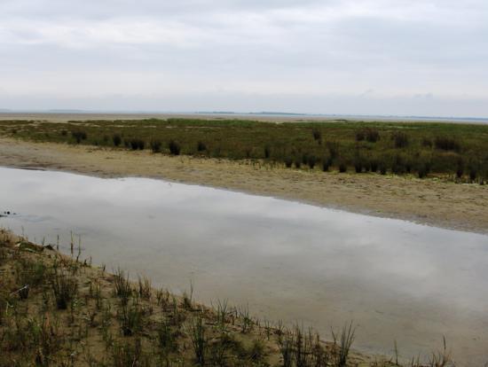 Baie des phoques