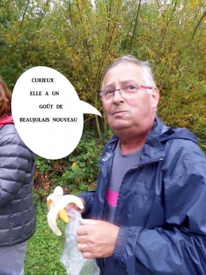 Villeneuve d'Ascq 07 10 15 004 1